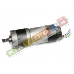 Motoriduttore E192 12/24 Vdc WOC ENCODER BIFASE 300Ncm@6rpm ... 15Ncm@700rpm (VEDERE DETTAGLI)
